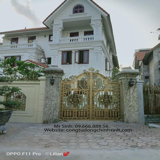 cổng nhôm đúc - C00131