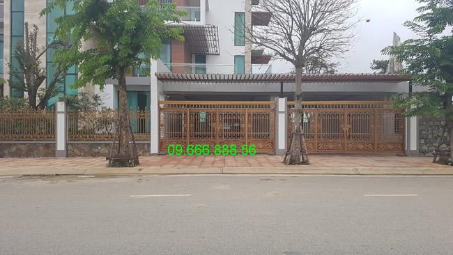 cổng nhôm đúc - C0049